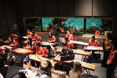 法蘭克林動物園慶祝農曆新年,在熱帶森林展廳裡,青少年揚琴古箏樂團成員們帶來一場小型新年演奏會。(記者劉晨懿之/攝影)