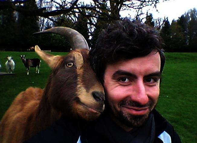 山羊比想像中聰明,有望成為人類最好的朋友。(取材自英國每日郵報)