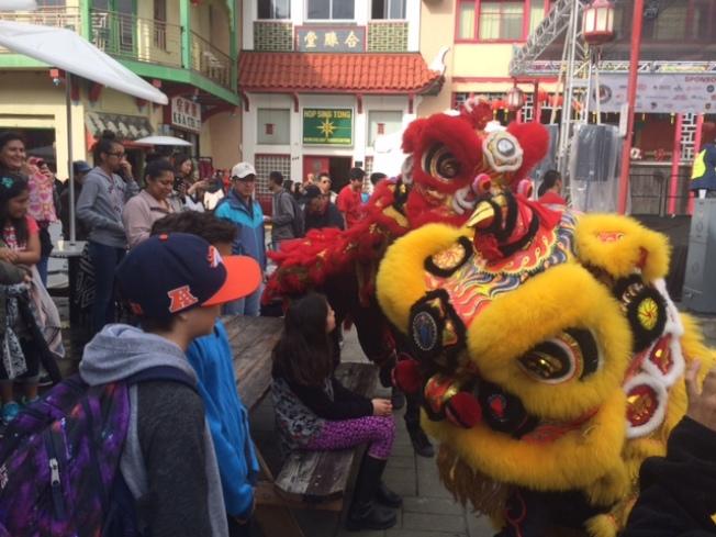 獅子向各族裔民眾拜年,喜氣洋洋。(記者楊青/攝影)