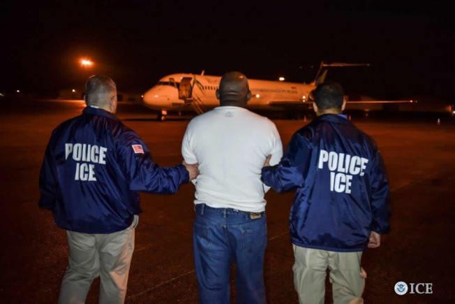 美國移民局連日大規模搜捕無證移民罪犯,圖為一名涉嫌謀殺的多明尼加男子被押上遞解專機。(Getty Images)