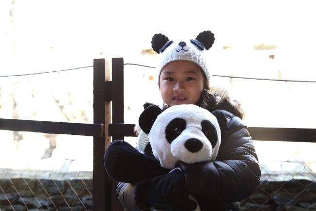 家住維州亞力山卓市的Katie非常喜歡熊貓,她與寶寶一天生日。(記者羅曉媛/攝影)