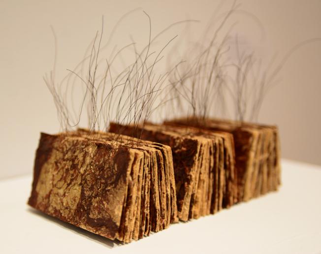楊偉林的作品「在書頁之間」。(記者許振輝/攝影)