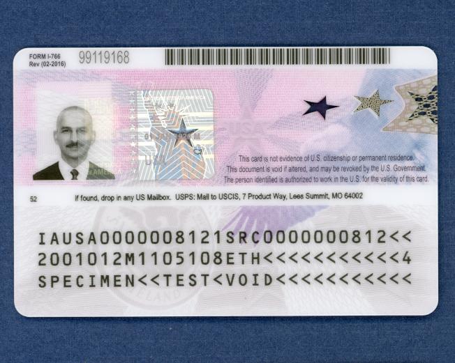 新版本工卡背面樣本。(移民局提供)