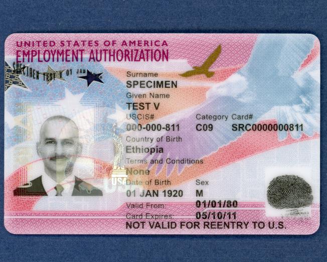 新版本工卡正面樣本。(移民局提供)