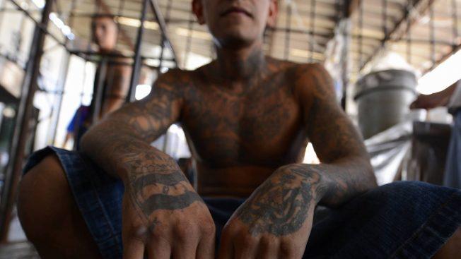 移民和海關執法局日前公布一項執行為期六周的掃黑行動成果,於全美各地逮捕超過1300人,其中有超過八成涉及幫派組織犯罪。(Getty Images)