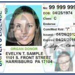 賓州將更新駕照、居民證