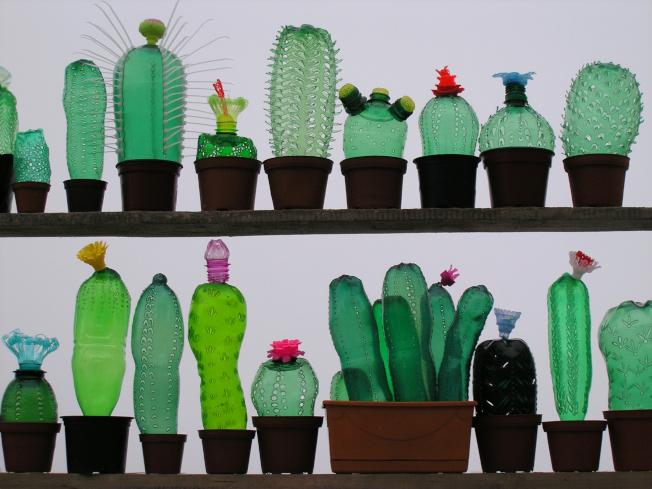 由寶特瓶製成的「廢物盆栽」,是黑手指的救星。(取自官網)