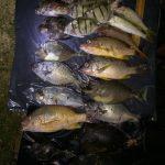 社區居民組團 打擊非法捕魚