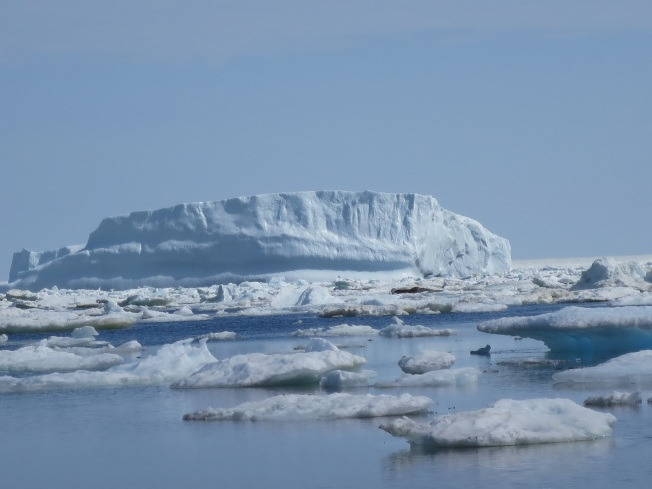 特威林蓋特的海上的浮冰和其後的冰山,寒氣逼人。