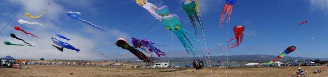 風箏節會場寬闊,各色風箏迎風而起。