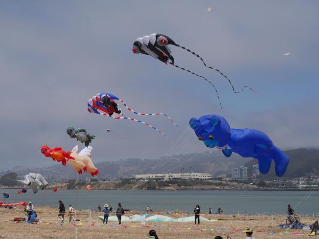 藝術風箏區飛揚著一些精彩的創作。