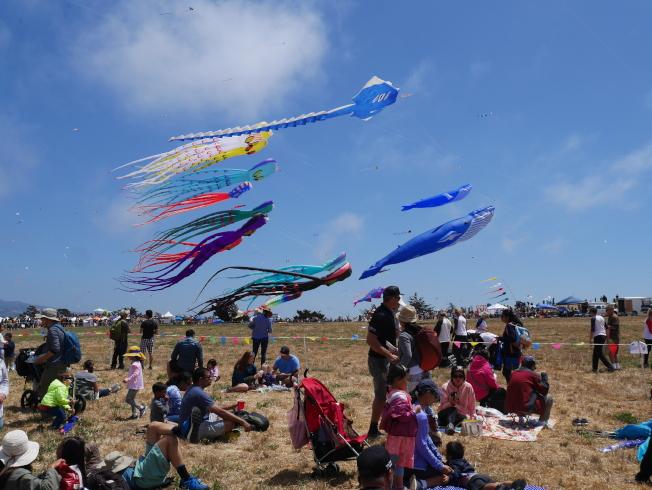 風箏節適合全家大小參與,觀眾一面看風箏,同時享受陽光。
