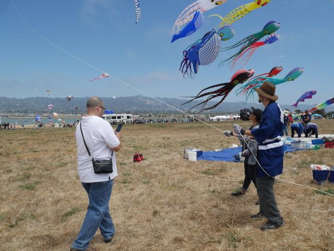 新手可以在會場學習放風箏。