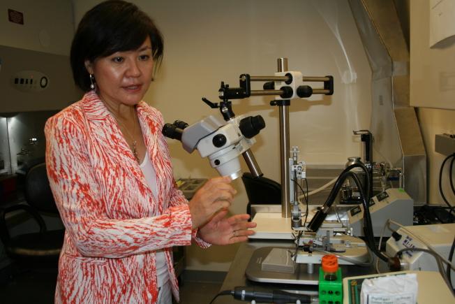 專攻阿茲海默症腦神經科學的麻省理工學院Picower學習暨記憶研究中心主任蔡立慧找到破解阻斷大腦記憶的新方法。(記者唐嘉麗/攝影)