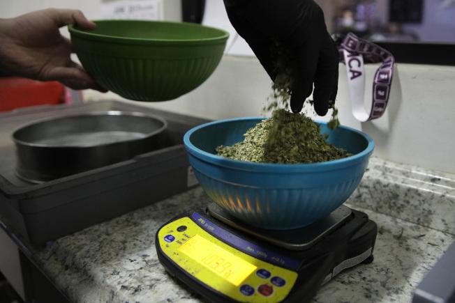 美國逐漸開放大麻的使用,但最新研究表明,長期吸食大麻增加死於高血壓的風險。圖為加州一間大麻醫療所員工稱大麻的重量。(美聯社)