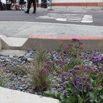 舊金山新排水系統 使用透水混凝土