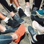 紐西蘭羊毛便鞋夯 矽谷名人也愛
