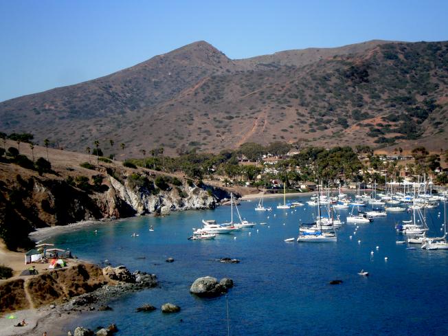 加州卡塔莉娜島雙港營地,可以預定鄰近的USC海洋科學中心提供的訪問宿舍。