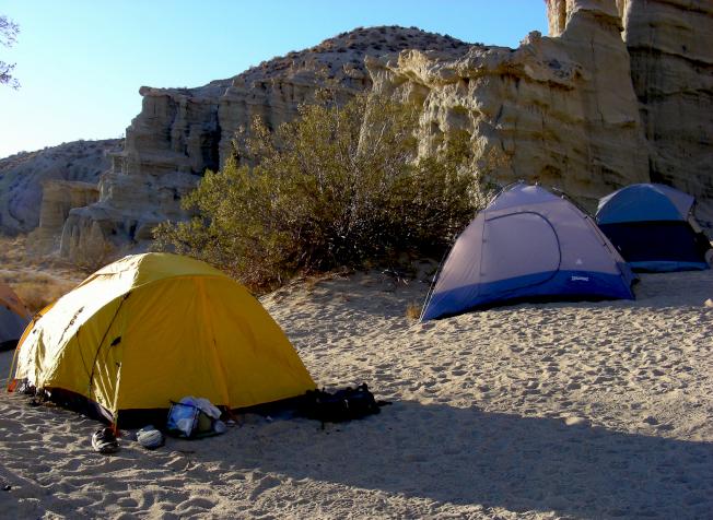 洛杉磯自然歷史博物館在紅岩峽谷國家保護區的年度野營。