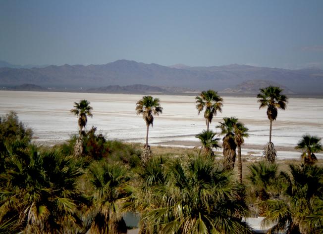 加州蘇打乾湖,可以預定加州州立大學CSUF沙漠研究所提供的簡易住宿。