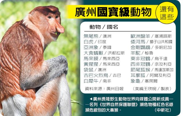 廣州國寶級動物 還有這些