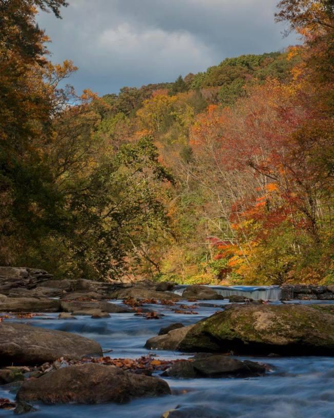 賓州的樹木變色持續時間比任何地區都要長,色彩也更豐富。(取自VisitPhilly臉書)