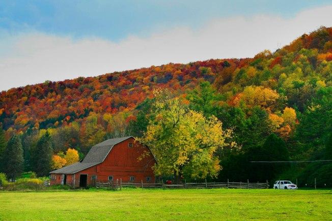 新賓州居民有望在今年秋季看到比往年更壯觀的秋色。(取自VisitPA臉書)