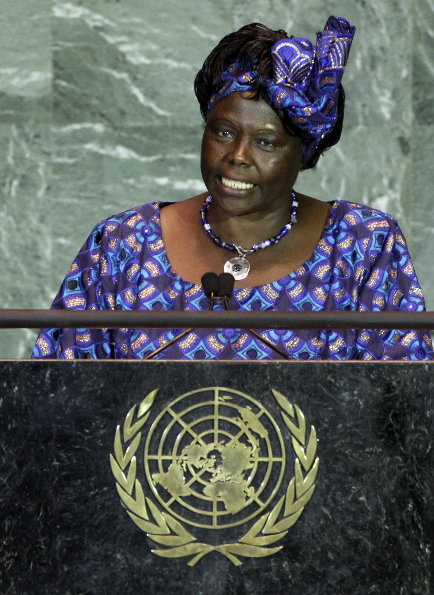 瑪泰2009年9月22日在聯合國氣候峰會發表講演。(美聯社)