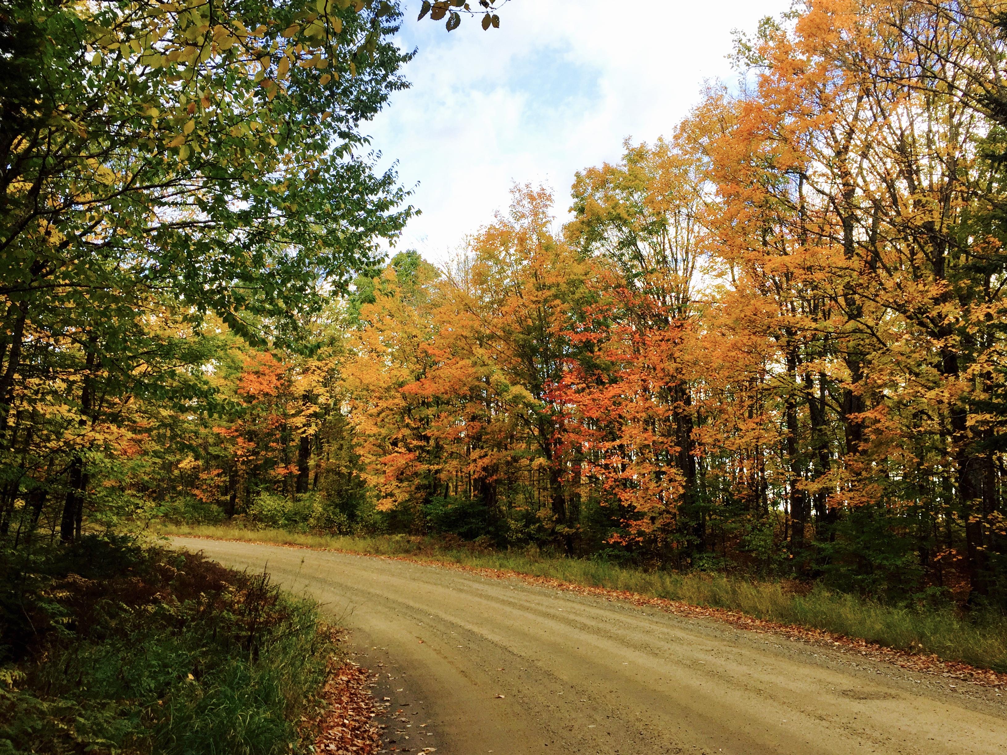 北密襯裙湖當下的彩色楓葉路景,預計下周開始紅葉覆蓋面積會更大。(楊曉迪提供)