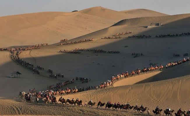 十一假期頭三天,敦煌湧進高達11萬名遊客騎乘駱駝。圖/擷自觀察者網
