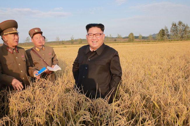 川普周末砲火四射,國內外都挑起話題。他並撂話再和北韓談也不會有結果,只有一個辦法行得通,暗示會動武。圖為北韓領導人金正恩視察農場。(Getty Images)