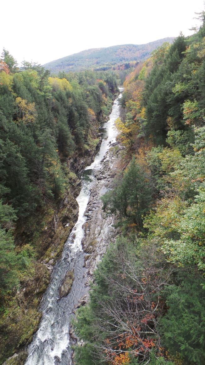 佛蒙特州奎奇峽谷10月中尚少顏色,讓不少遊客大失所望。(記者唐嘉麗/攝影)
