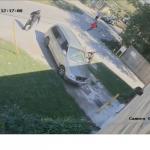 四歹徒犯謀殺案 當街劫車