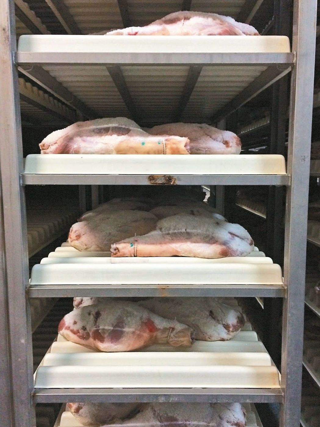 切割、修整:豬腿切割後放血,除去豬腿皮面的殘毛和汙物。 圖/陳靜宜