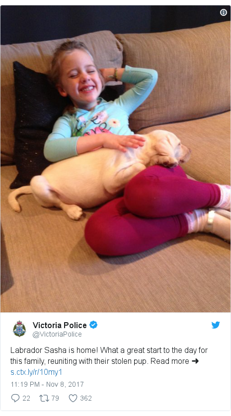 當地警方公開了幼犬與瑪雅團聚照片。原本在電視上愁眉苦臉的瑪雅,笑顏逐開和薩莎一同玩耍。(維州警察局提供)