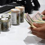 娛樂用大麻 聖荷西准合法銷售16店明年起開賣  擁有加州購買認證、21歲以上成年人都可買