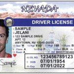 全真駕照身分證 明年更新