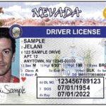 取得全真駕照  原加州駕照即作廢