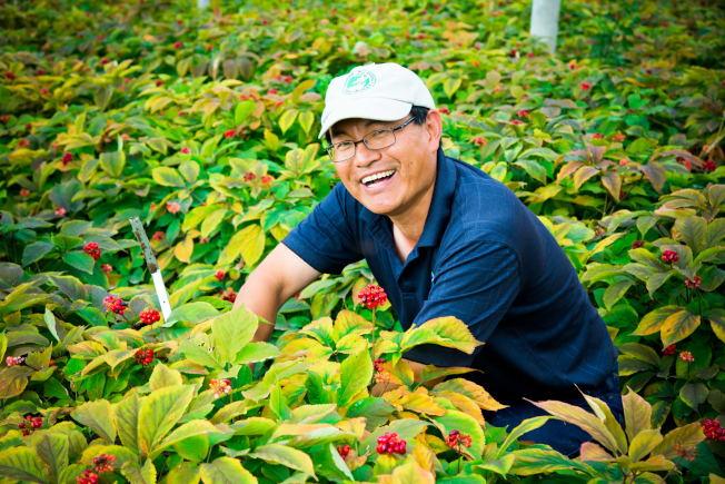 姜銘濤在參場種植。