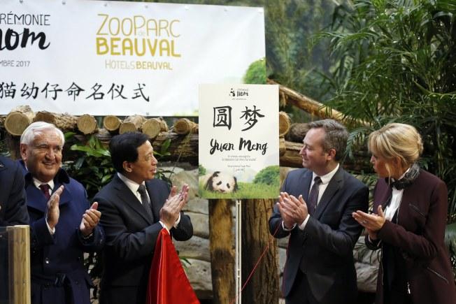 法國總統夫人布麗吉特(右)出席熊貓取名儀式,左二為中國外交部副部長張業遂。(美聯社)