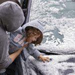 應對今冬暴雪 新州準備好了