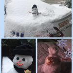 罕雪打亂生活 賞雪堆雪人樂