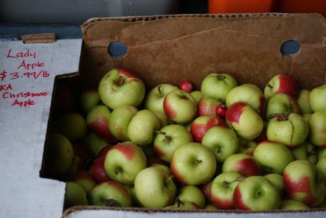 女士苹果是已知最古老的苹果之一,原产地为法国。