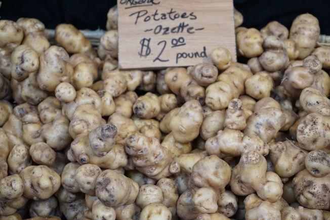 奥玆特(Ozette,马铃薯)皮薄,芽眼深,外形与众不同。