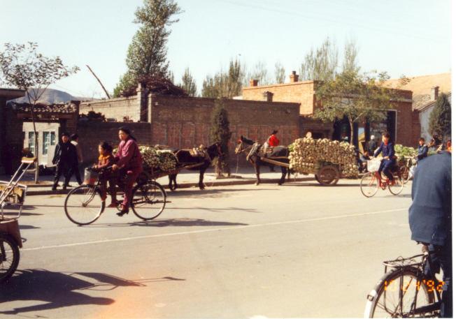 这是通往城南郊外的一条街,车水马龙,繁忙喧嚣,路边驴车里装的是白菜。