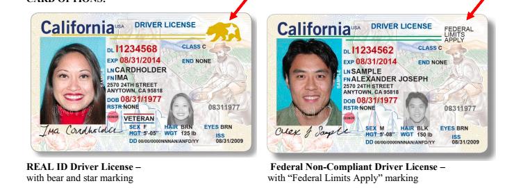左圖為加州全真駕照樣本,有大熊和五星圖案,右圖為普通駕照樣本,將註明「聯邦功能限制」(Federal Limits Apply)字樣。(DMV提供)