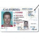 新州無證移民駕照 核發擬參照加州