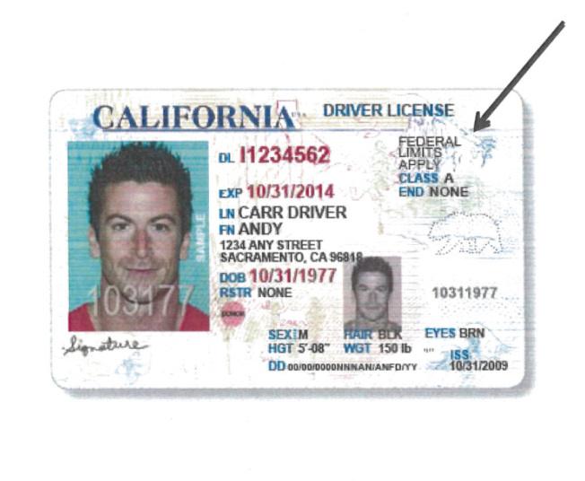 加州所頒發的無證移民駕照,僅供交通使用。(加州MVC)