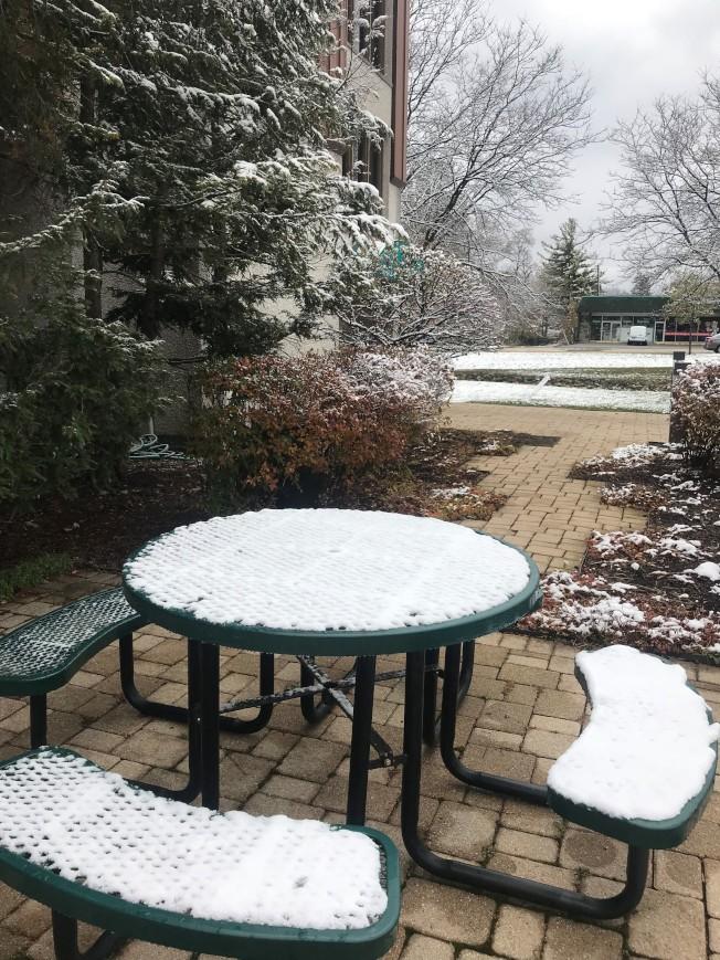 大芝加哥地区9日降下今冬第一场积雪。 (特派员黄惠玲/摄影)