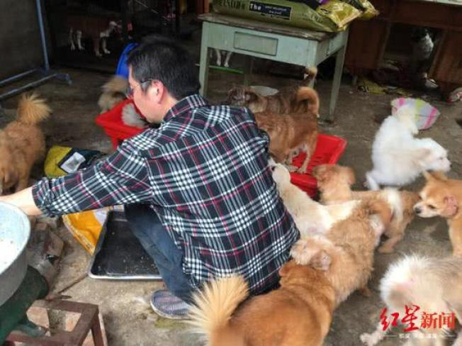 张凯喂养他的狗。 (取材自红星新闻)